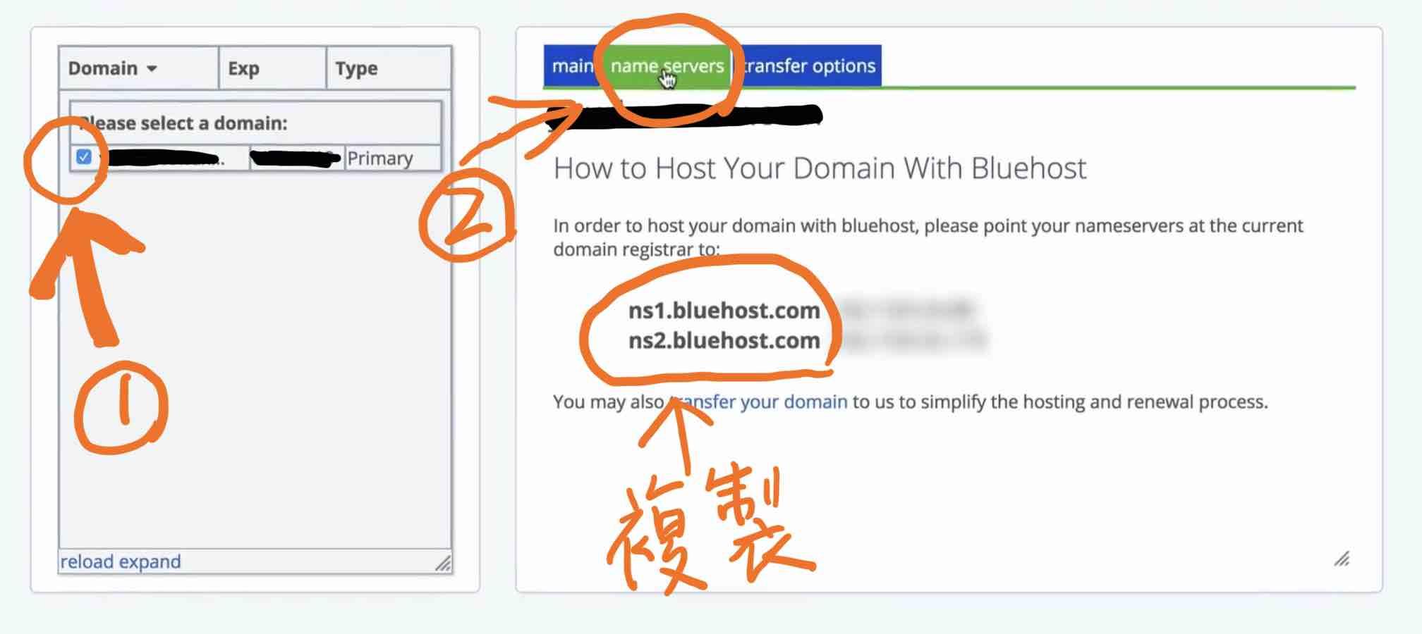 勾選網域->點選 name service,複製下方兩個Bluehost網域